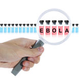 Find ebola vaccine. With magnifying glass. Isolated on white background Stock Images