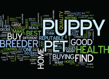 Find Healthy Puppy Of Reputable Breeder Text Background Word Cloud Concept vector illustration