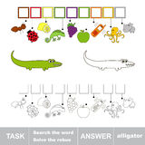 Find hidden word alligator. Find the hidden word alligator. Task and answer Royalty Free Stock Image