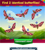 Find 2 identical butterflies. Visual game for children . Task to find 2 identical butterflies Stock Photo