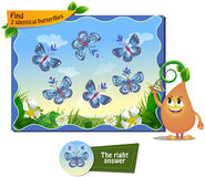Find 2 identical butterflies. Visual game for children . Task to find 2 identical butterflies Stock Images