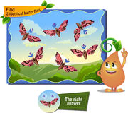Find 2 identical butterflys. Visual game for children . Task to find 2 identical butterflies Stock Photos