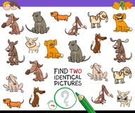 Find identical cartoon pictures of dogs game. Cartoon Illustration of Finding Two Identical Pictures Educational Activity Game for Children with Funny Comic Dog Stock Image