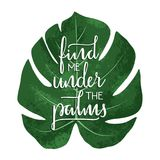 Find me under the palms - hand drawn typographic design. Art print with lettering and tropical leaf. Vector illustration Royalty Free Stock Photography