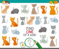 Find one cat of a kind game for children. Cartoon Illustration of Find One of a Kind Educational Activity Game for Kids with Cats or Kittens Characters Stock Image