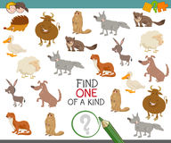 Find one of a kind with animals. Cartoon Illustration of Find One of a Kind Educational Activity for Children with Animal Characters Stock Image