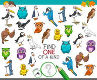 Find one of a kind with birds animal characters Stock Photo