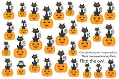 Find owl among cats on pumpkins, halloween fun education puzzle game for children, preschool worksheet activity for kids, task for stock illustration