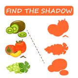 Find the right shade of fruit. Kiwi with grapes and persimmon . Set to find the correct shadow matching educational game of the child to compare and connect Royalty Free Stock Photography