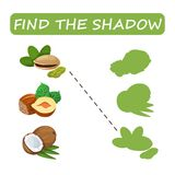 Find the correct shadow nuts. Find the right shade nuts. Set to find the right shadow matching educational baby game to compare and connect objects and their Royalty Free Stock Photography