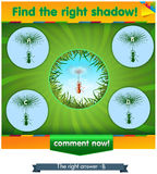 Find right shadow ant. Visual game for children and adults. Task the find right shadow ant Royalty Free Stock Photos