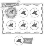 Find right shadow frog. Visual game for children and adults. Task the find right shadow frog. black and white  illustration Royalty Free Stock Photography