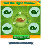 Find right shadow snail. Visual game for children and adults. Task the find right shadow snail Stock Image