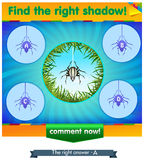 Find right shadow spider. Visual game for children and adults. Task the find right shadow spider Royalty Free Stock Photo