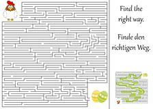 Find the right way. Through the maze Royalty Free Stock Photography
