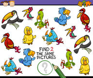 Find same picture game cartoon Stock Photos