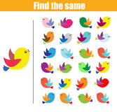 Find the same pictures children educational game. Find equal birds kids activity Royalty Free Stock Photo