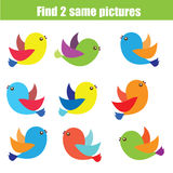 Find the same pictures children educational game. Find equal pairs of birds kids activity Royalty Free Stock Photo