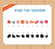Find the Shadow Educational Activity Task for Preschool Children with flowers Royalty Free Stock Image