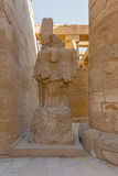 Find Similar  Get a Comp  Save to Lightbox   Karnak Temple, Luxo Stock Images