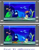 Find ten differences. In marine aquariums Royalty Free Stock Images