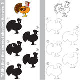 Find true correct shadow, the educational kid game. Beautiful Turkey with different shadows to find the correct one, compare and connect object with it true Royalty Free Stock Images