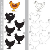 Find true correct shadow, the educational kid game. Brown Hen with different shadows to find the correct one, compare and connect object with it true shadow Royalty Free Stock Photo