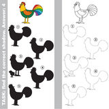 Find true correct shadow, the educational kid game. Cock with different shadows to find the correct one, compare and connect object with it true shadow, the Royalty Free Stock Photos