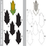 Find true correct shadow, the educational kid game. Corn Maize with different shadows to find the correct one, compare and connect object with it true shadow Stock Image