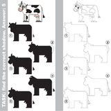 Find true correct shadow, the educational kid game. Cows with different shadows to find the correct one, compare and connect object with it true shadow, the Stock Image