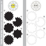 Find true correct shadow, the educational kid game. Funny Daisy Face with different shadows to find the correct one, compare and connect object with it true Royalty Free Stock Photos