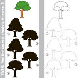 Find true correct shadow, the educational kid game. Leaf Tree with different shadows to find the correct one, compare and connect object with it true shadow Stock Photography