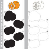Find true correct shadow, the educational kid game. Orange and half slice with different shadows to find the correct one, compare and connect object with it Royalty Free Stock Image