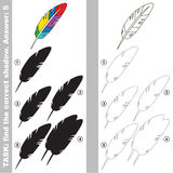 Find true correct shadow, the educational kid game. Rainbow Feather with different shadows to find the correct one, compare and connect object with it true Stock Image