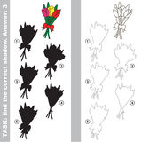 Find true correct shadow, the educational kid game. Tulip Bouquet with different shadows to find the correct one, compare and connect object with it true shadow Stock Photo