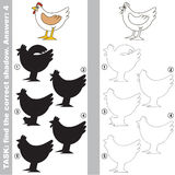 Find true correct shadow, the educational kid game. White Hen with different shadows to find the correct one, compare and connect object with it true shadow Royalty Free Stock Photos