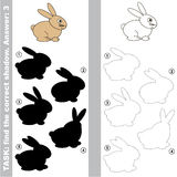Find true correct shadow. Hare with different shadows to find the correct one, the easy educational kid gaming with simple game level, the funny educational Royalty Free Stock Images