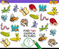 Find two identical bug pictures game for kids. Cartoon Illustration of Finding Two Identical Pictures Educational Game for Children with Bugs Animal Characters Stock Photo