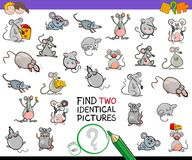 Find two identical mice educational activity Royalty Free Stock Photo