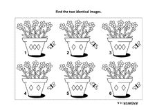 Find the two identical pictures with potted flowers visual puzzle and coloring page. IQ training find the two identical pictures with potted flowers visual Stock Photo