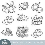 Find two the same pictures, education game. Black and white set of nuts. Find two the same pictures, education game for children. Black and white set of nuts vector illustration
