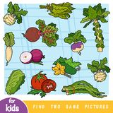 Find two the same pictures, education game for children. Colorful set of vegetables stock illustration