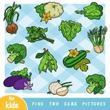 Find two the same pictures, education game for children. Colorful set of vegetables royalty free illustration