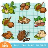 Find two the same pictures, education game. Colorful set of nuts. Find two the same pictures, education game for children. Colorful set of nuts stock illustration