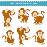 Find two the same pictures, game for children, monkey. Find two the same pictures, education game for children, monkey Royalty Free Stock Images