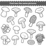 Find two the same pictures, set of mushrooms Royalty Free Stock Photo