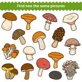 Find two the same pictures, set of mushrooms Stock Image