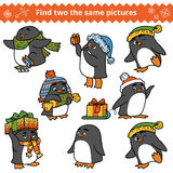 Find two the same pictures, set of penguins. Find two the same pictures, education game for children. Set of penguins with Christmas gifts Royalty Free Stock Photography