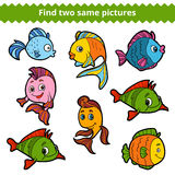 Find two same pictures. Vector color set of fishes. Find two same pictures, education game for children. Vector color set of fishes Royalty Free Stock Images
