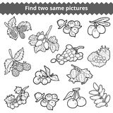 Find two same pictures. Vector set of berries Royalty Free Stock Photography